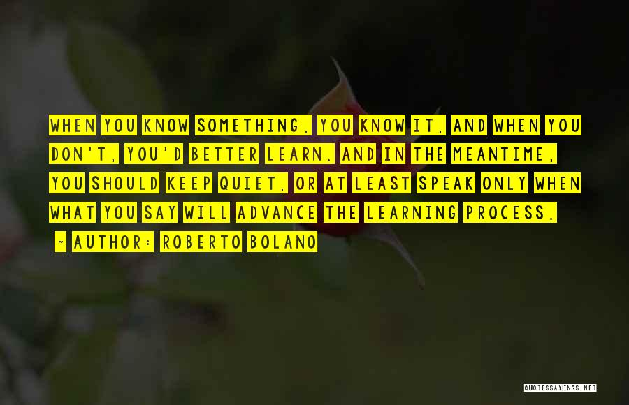 The Meantime Quotes By Roberto Bolano
