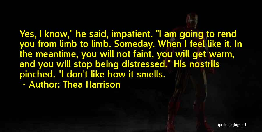 The Meantime Quotes By Thea Harrison