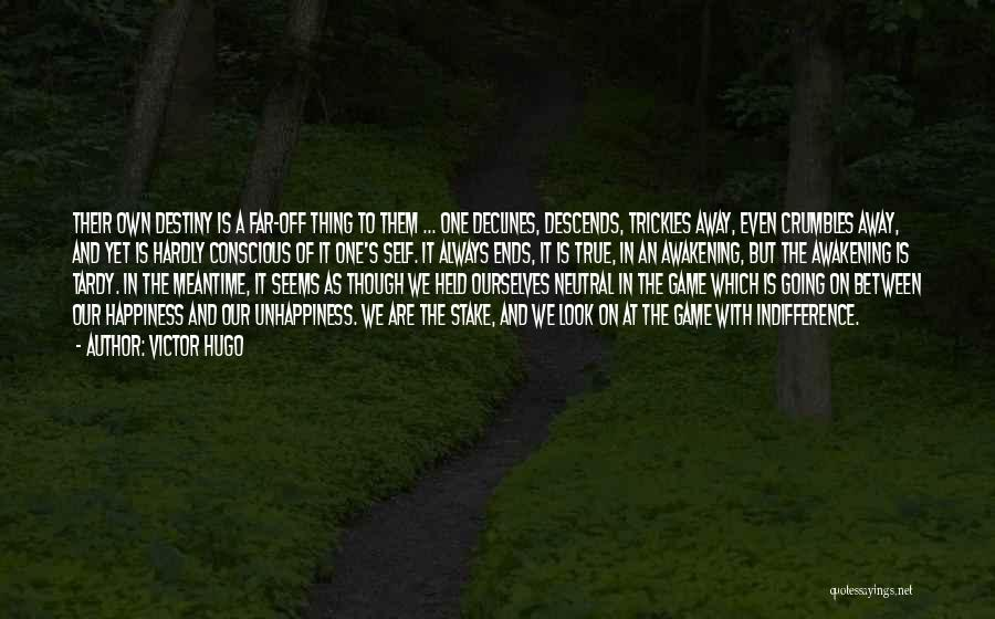 The Meantime Quotes By Victor Hugo