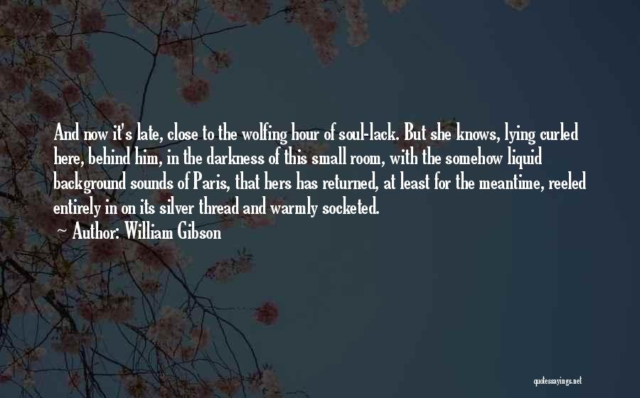 The Meantime Quotes By William Gibson