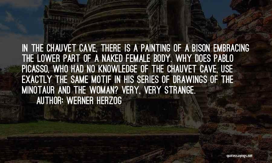 The Minotaur Quotes By Werner Herzog
