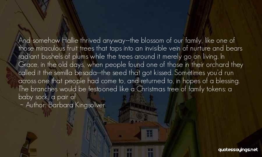 The Miraculous Quotes By Barbara Kingsolver