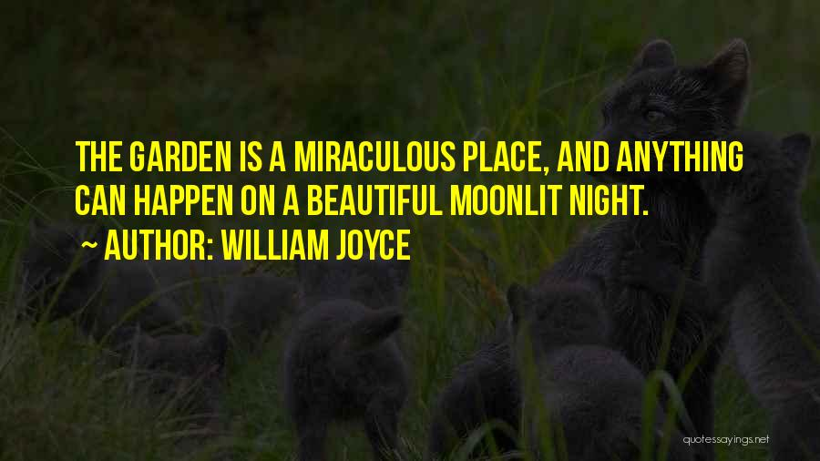 The Miraculous Quotes By William Joyce