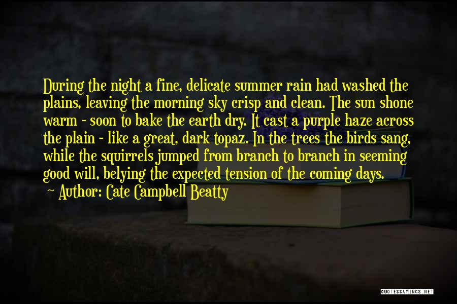 The Morning Sky Quotes By Cate Campbell Beatty