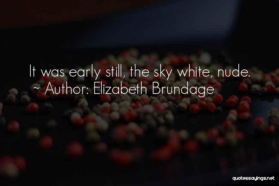 The Morning Sky Quotes By Elizabeth Brundage