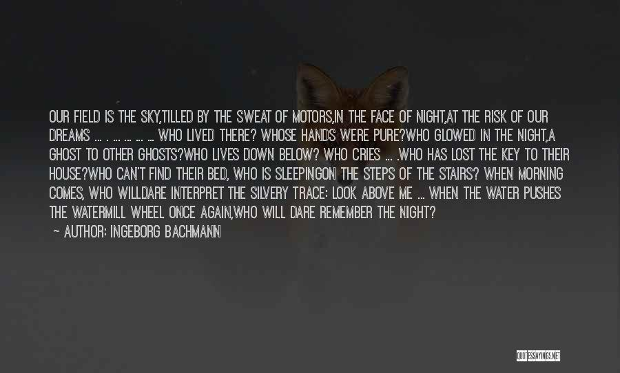 The Morning Sky Quotes By Ingeborg Bachmann