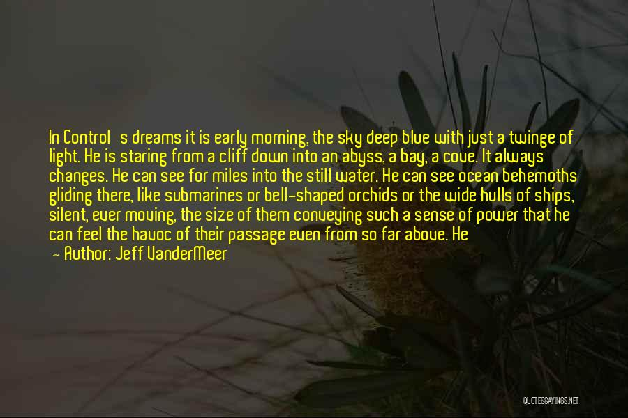 The Morning Sky Quotes By Jeff VanderMeer