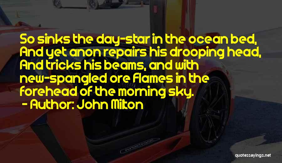 The Morning Sky Quotes By John Milton