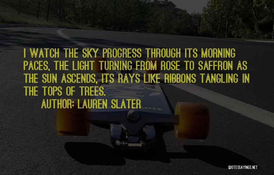 The Morning Sky Quotes By Lauren Slater