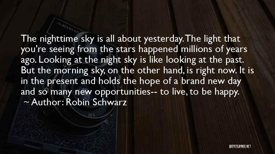 The Morning Sky Quotes By Robin Schwarz