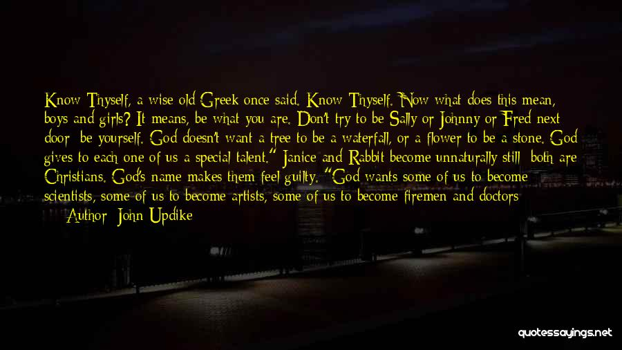 The Name Sally Quotes By John Updike