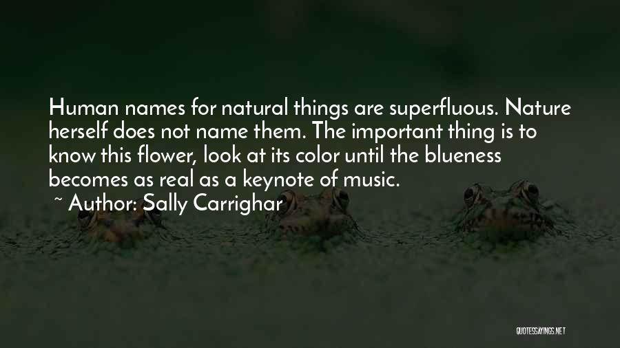 The Name Sally Quotes By Sally Carrighar