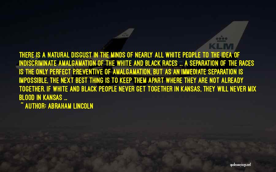 The Next Best Thing Quotes By Abraham Lincoln