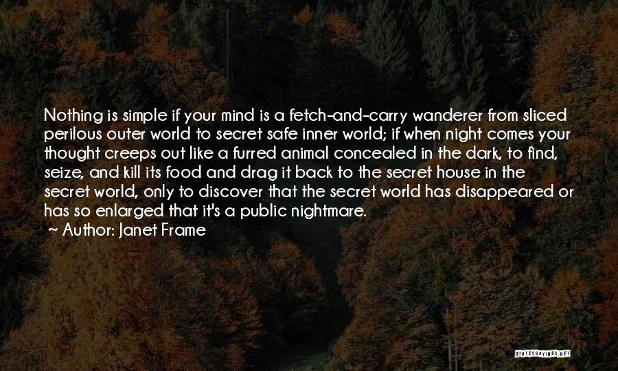 The Night She Disappeared Quotes By Janet Frame