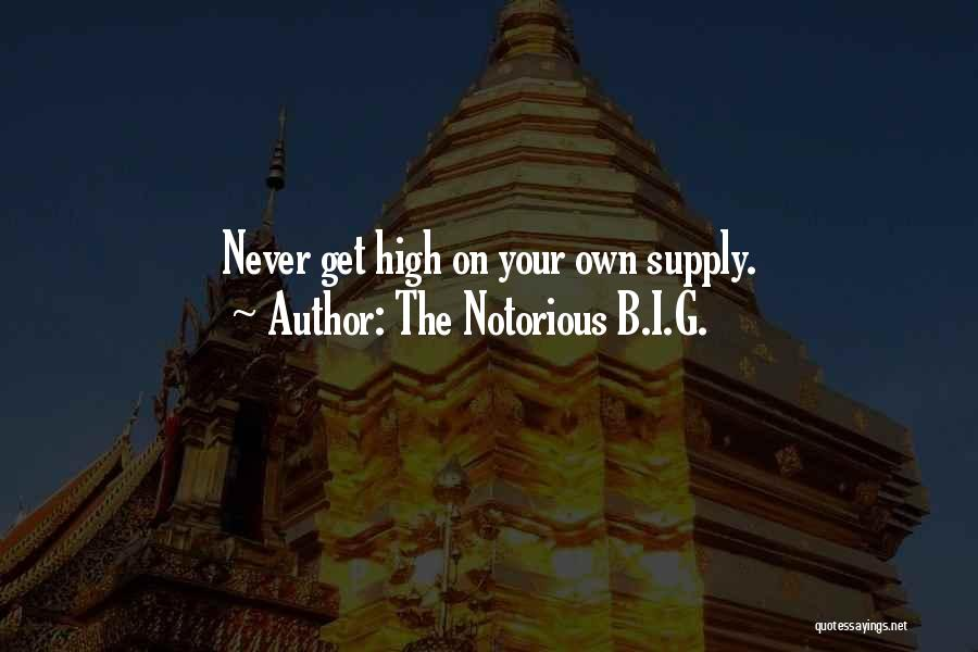 The Notorious B.I.G. Quotes 556588