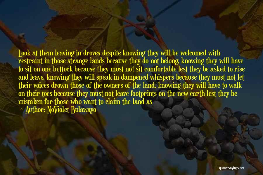 The Novel Speak Quotes By NoViolet Bulawayo
