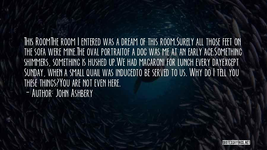 The Oval Portrait Quotes By John Ashbery
