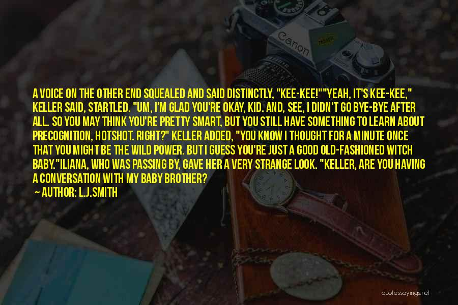 The Passing Of A Brother Quotes By L.J.Smith
