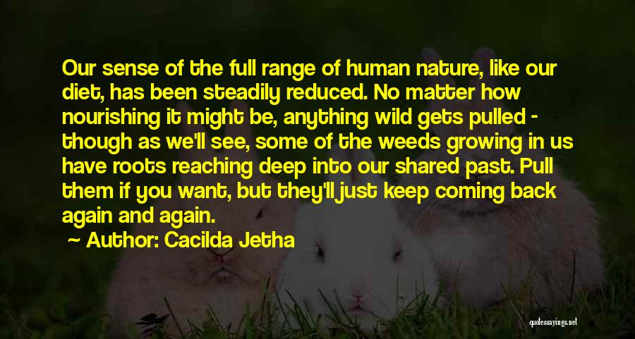 The Past Coming Back Quotes By Cacilda Jetha