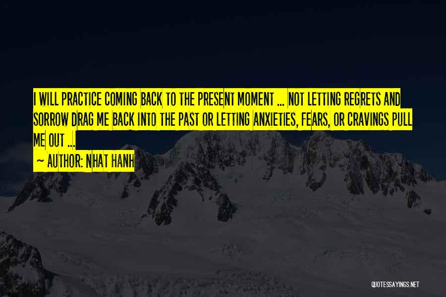 The Past Coming Back Quotes By Nhat Hanh