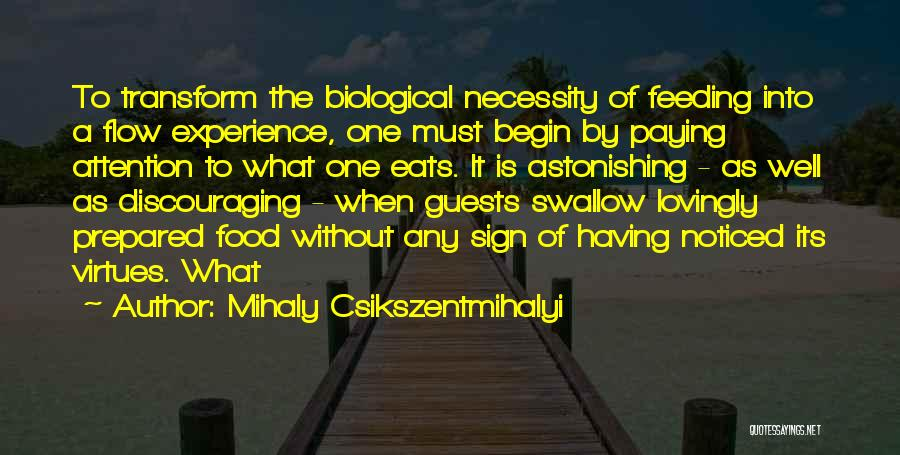 The Paying Guests Quotes By Mihaly Csikszentmihalyi