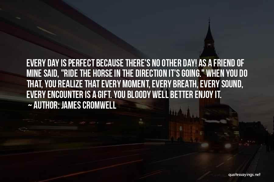 The Perfect Day Quotes By James Cromwell