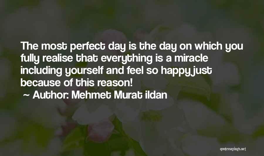The Perfect Day Quotes By Mehmet Murat Ildan