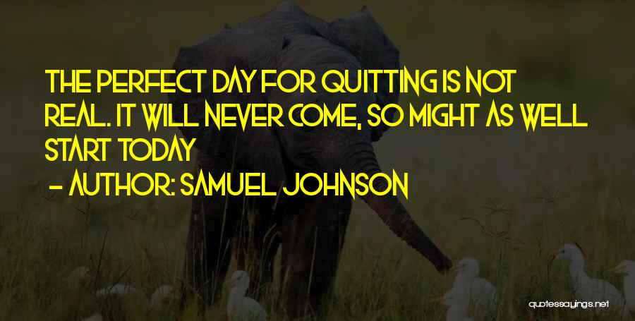 The Perfect Day Quotes By Samuel Johnson