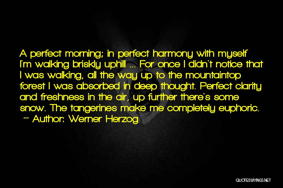 The Perfect Day Quotes By Werner Herzog