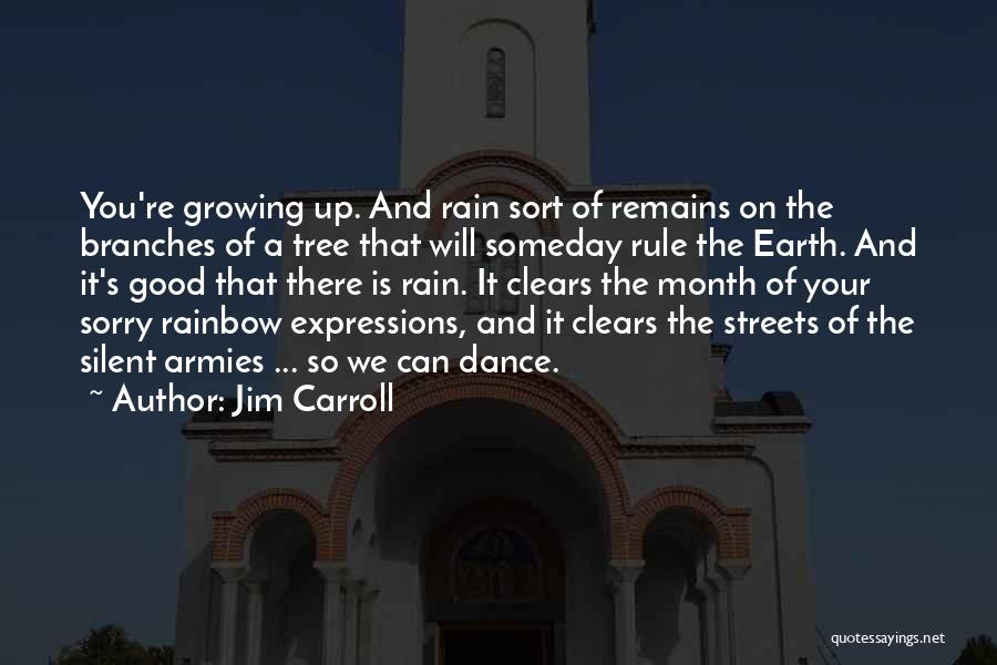 The Rain Poem Quotes By Jim Carroll