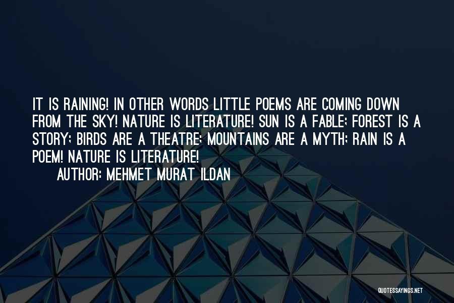 The Rain Poem Quotes By Mehmet Murat Ildan
