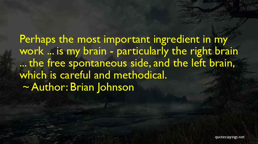 The Right Side Of The Brain Quotes By Brian Johnson