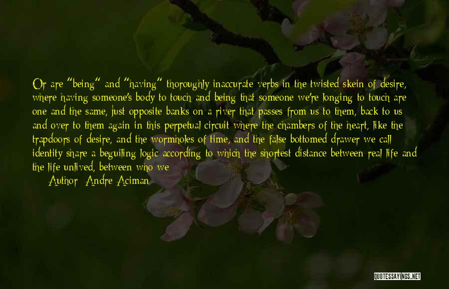 The River Between Us Quotes By Andre Aciman