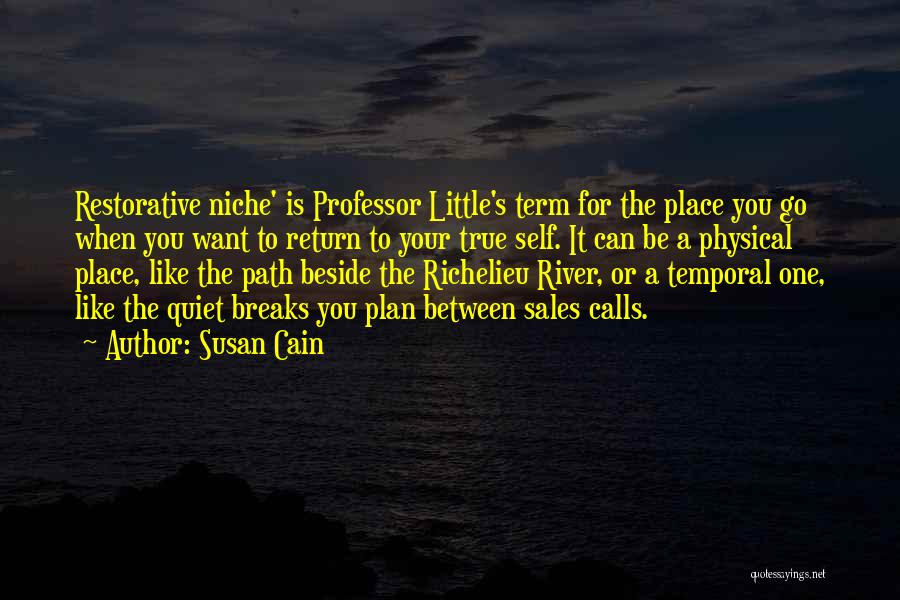 The River Between Us Quotes By Susan Cain
