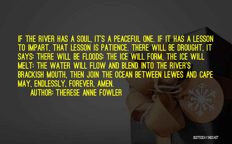 The River Between Us Quotes By Therese Anne Fowler