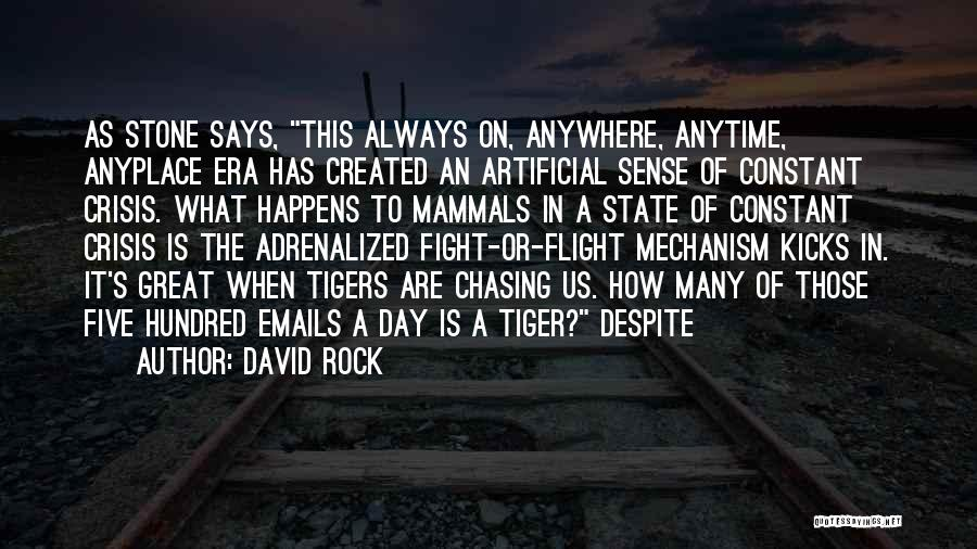 The Rock Says Quotes By David Rock
