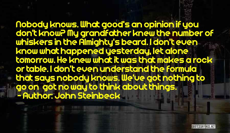 The Rock Says Quotes By John Steinbeck