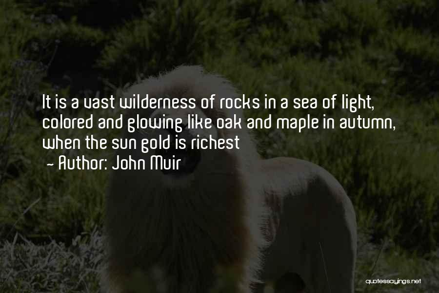 The Sea And Sun Quotes By John Muir