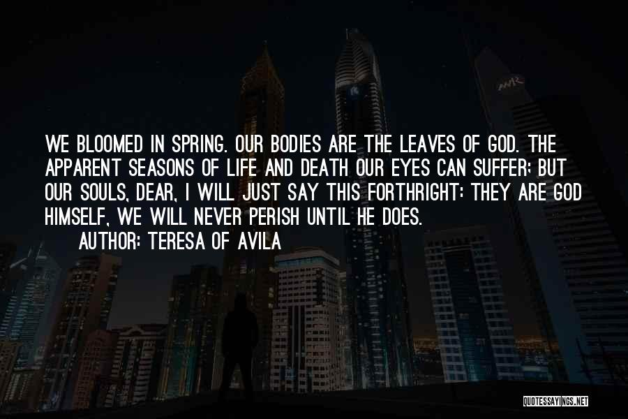 The Seasons Quotes By Teresa Of Avila
