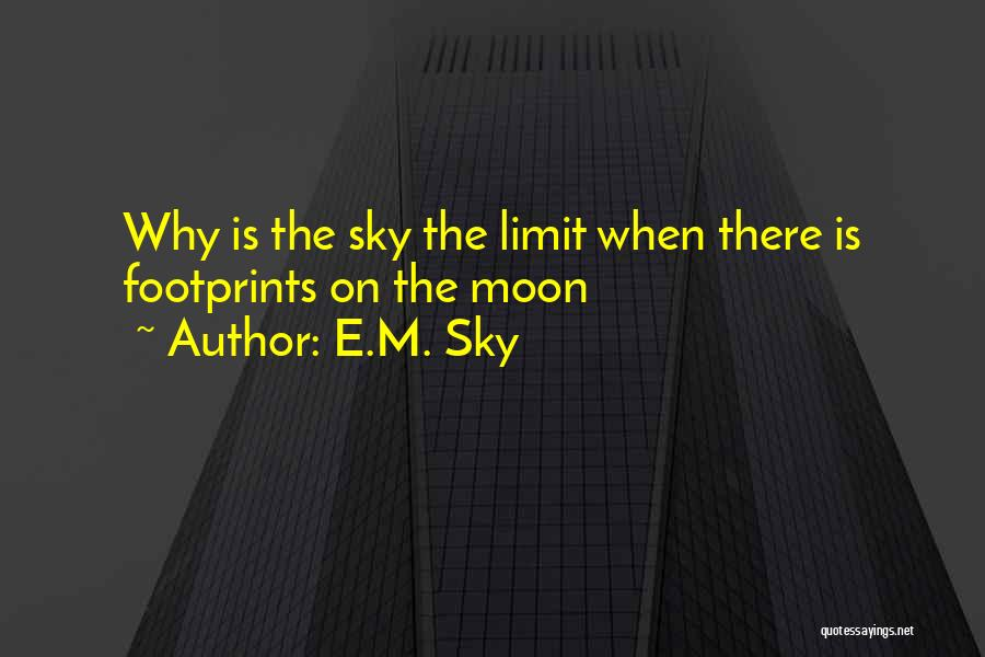 The Sky's Not The Limit Quotes By E.M. Sky