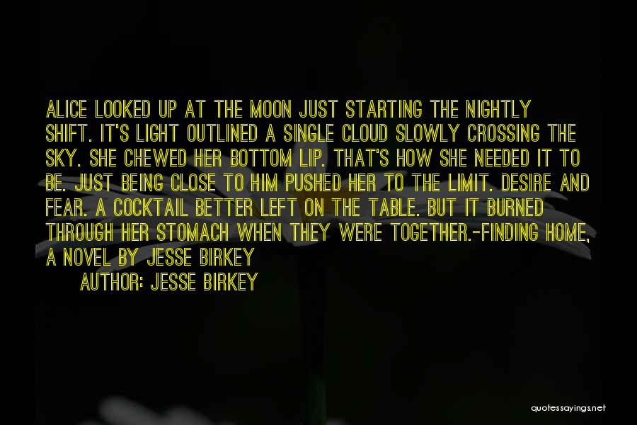 The Sky's Not The Limit Quotes By Jesse Birkey