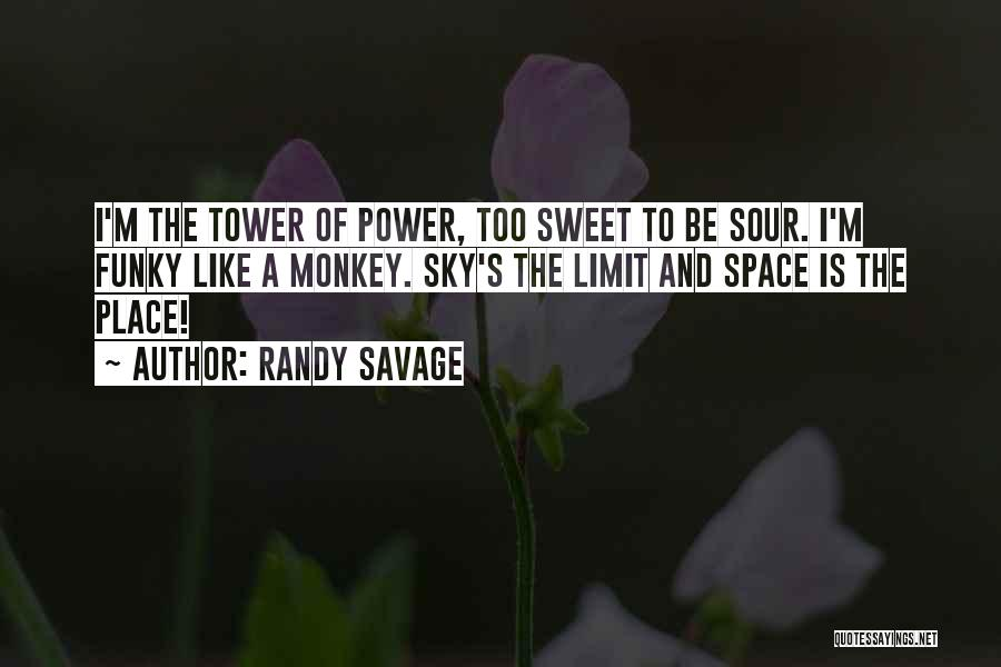 The Sky's Not The Limit Quotes By Randy Savage