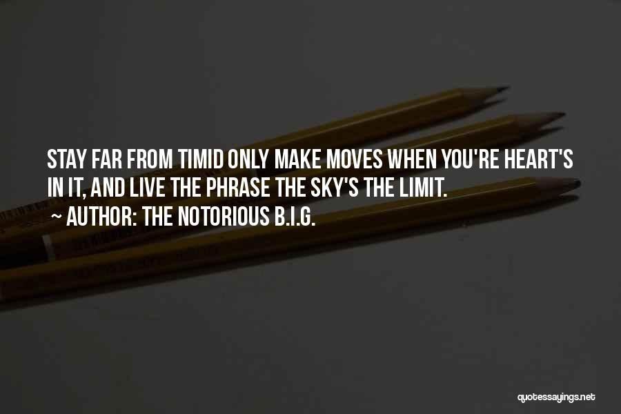 The Sky's Not The Limit Quotes By The Notorious B.I.G.