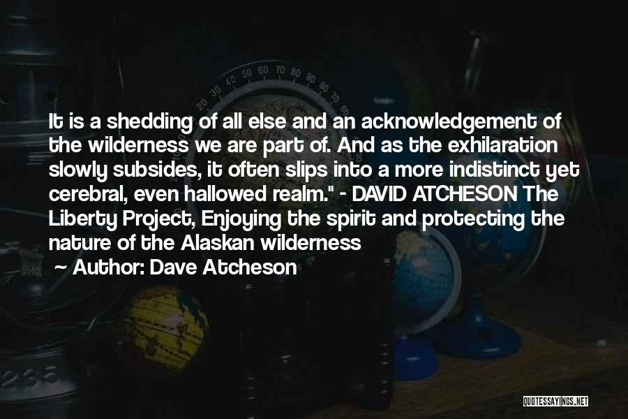 The Spirit Realm Quotes By Dave Atcheson