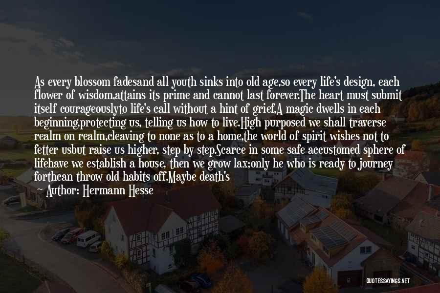 The Spirit Realm Quotes By Hermann Hesse