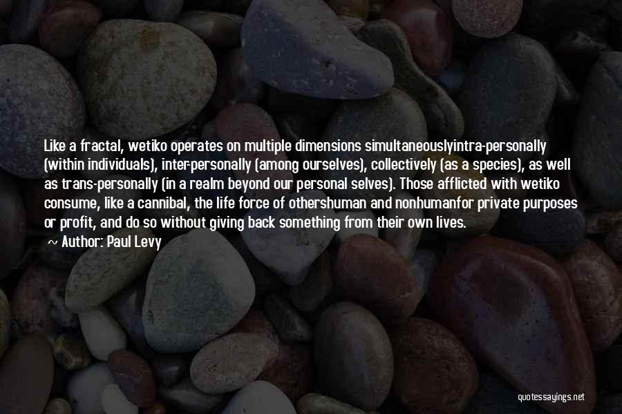 The Spirit Realm Quotes By Paul Levy