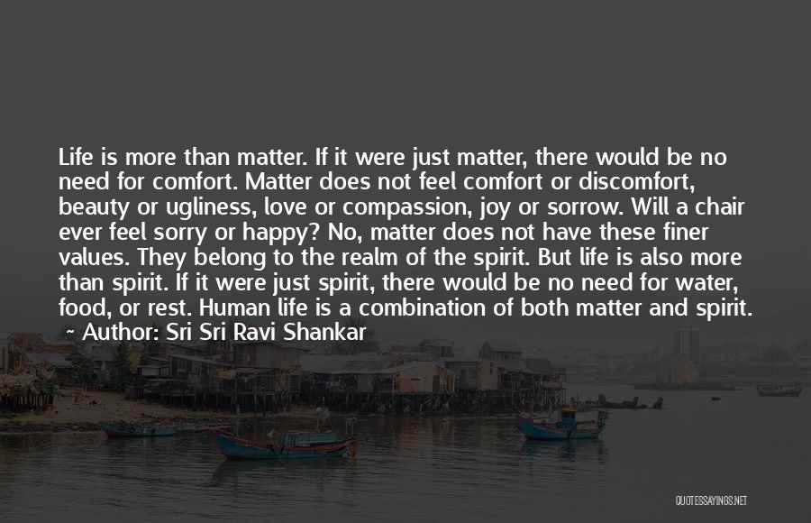 The Spirit Realm Quotes By Sri Sri Ravi Shankar
