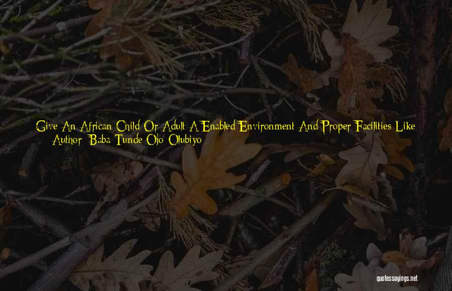 The Stone Child Quotes By Baba Tunde Ojo-Olubiyo