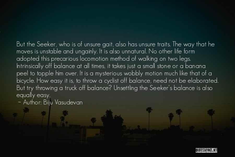 The Stone Child Quotes By Biju Vasudevan