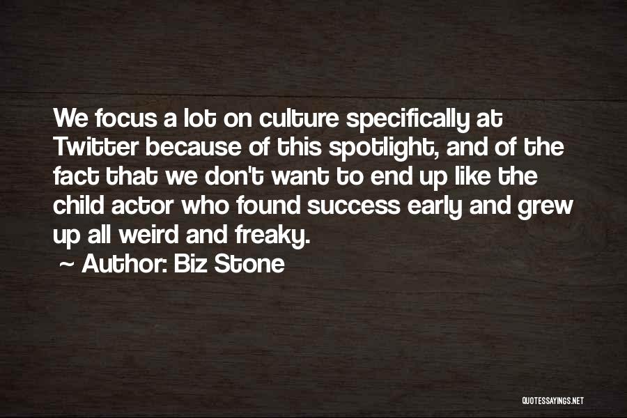 The Stone Child Quotes By Biz Stone
